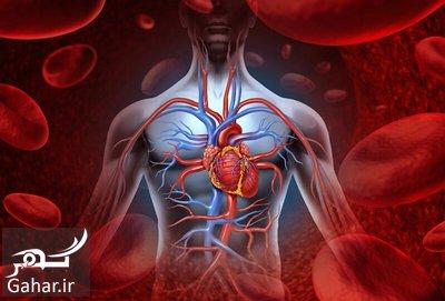 vitamin bloodcirculation1 2 معرفی انواع ویتامین برای بهبود گردش خون