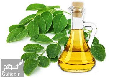moringa oil آیا می دانید روغن مورینگا چیست؟