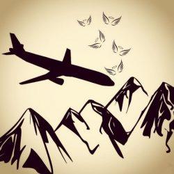 عکس پروفایل سقوط هواپیما