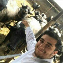 کنایه مردم به قاضی پور درباره چوپانی فرزندش با گاوهای ۲۰ میلیونی!