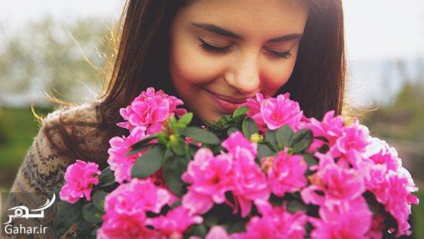 character of the language of flowers شخصیت شناسی گل ها برای ماه های مختلف