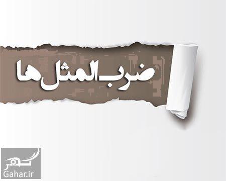 mataleb www.gahar .ir 20.06.97 6 حکایت و داستان ضرب المثل برج زهر مار