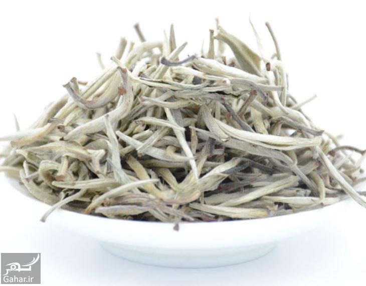 خواص چای سفید, جدید 1400 -گهر