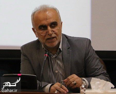 farha dezhpasand بیوگرافی فرهاد دژپسند وزیر اقتصاد پیشنهادی روحانی