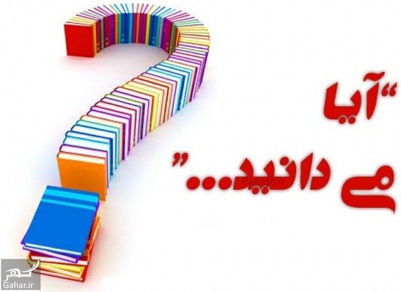 www.gahar .ir 10.08.97 2 آیا می دانید های بسیار جالب و خواندنی