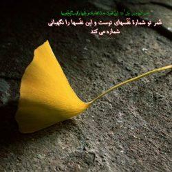 حدیث در مورد موفقیت از معصومین علیهم السلام