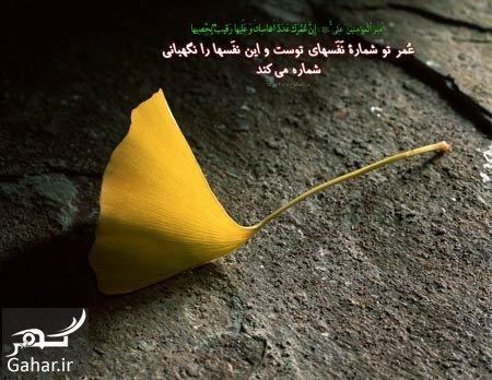 mataleb www.gahar .ir 28.09.97 2 حدیث در مورد موفقیت از معصومین علیهم السلام