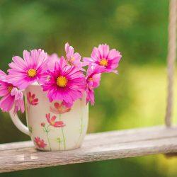 اشعار دوبیتی در مورد بهار از شاعران معروف