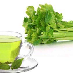 دمنوش چای سبز و کرفس و طرز تهیه آن