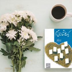 معرفی کتاب یک عاشقانه آرام نوشته نادر ابراهیمی