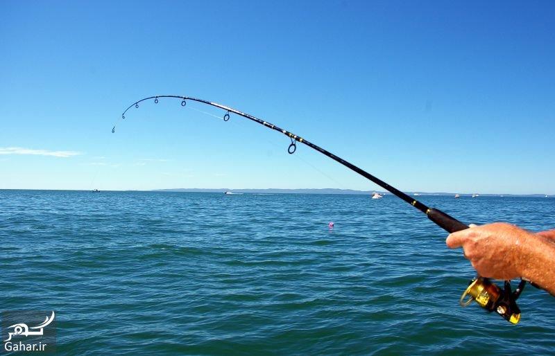4733771 2216 l آشنایی با ورزش ماهیگیری و انواع ماهی گیری