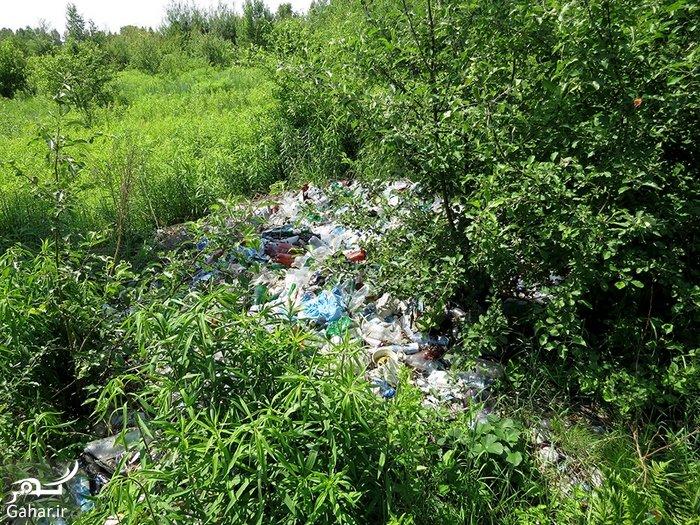 اثرات و پیامد ریختن زباله در طبیعت چیست؟, جدید 1400 -گهر