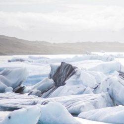 آیا می خواهید به تور قطب شمال بروید؟
