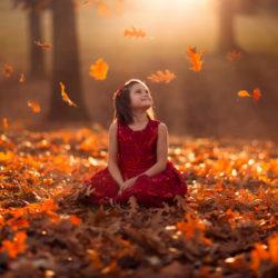 نکات عکاسی در فصل پاییز