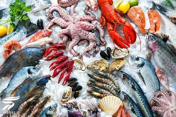 آشنایی با حیوانات و جانوران دریایی و آبزی, جدید 1400 -گهر