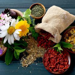 معرفی گیاهانی برای از بین بردن عفونت های بدن