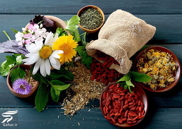 gyahane daroii معرفی گیاهانی برای از بین بردن عفونت های بدن