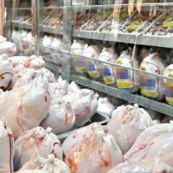 فروش مرغ بیش از ۲۴ هزار تومان تخلف است