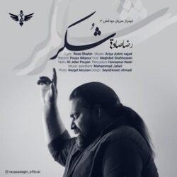 دانلود آهنگ شکر از رضا صادقی, جدید 1400 -گهر